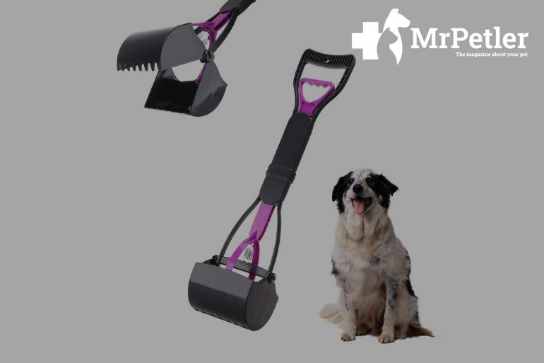 Scoop for dogs